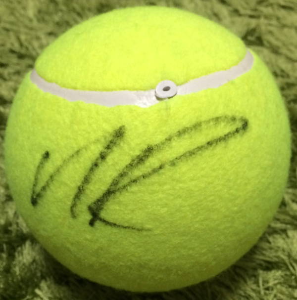 sign_ball_raonic_2014